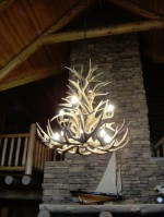 Real Antler White-tail / Mule Deer Cascade Chandelier