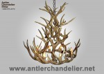 Real Antler Mule Deer Royal Crown MDGLCR