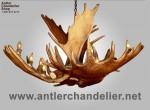 Real Antler Moose Single-Tier Chandelier MooseSnglTr