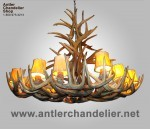 Real Antler Wyoming White-tail Chandelier WTRCRWN