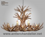 Reproduction Mule Deer Oval Chandelier CRL-6