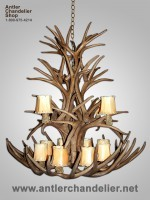 Reproduction White-tail / Mule Deer Combo Chandelier CRL-8