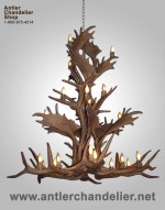 Reproduction Custom Elk / Fallow Chandelier CRL-9450