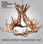 Real Antler Elk Royal Crown Chandelier ELKCRWN-3