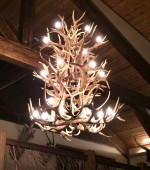 Real Antler Elk / Whitetail / Mule Deer Chandelier EWTMD3TR