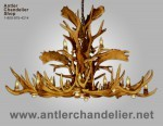 Real Antler Fallow / Mule Deer / Elk Oval Chandelier ElkFalMd