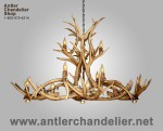 Real Antler Mule Deer Dining/Pool Table Oval Chandelier MDINVOB-6