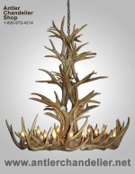 Real Antler Mule Deer Grand Teton Chandelier MDTSPR-4
