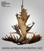 Real Antler Moose Triple-Tier Chandelier MOOSE3TR-7
