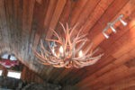 Reproduction Single-Tier Mule Deer Chandelier CRL-1