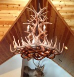 Reproduction XXL White-Tail Cascade Chandelier CRL-26