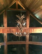 Reproduction Mule Deer Chandelier CRL-5