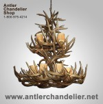 Real Antler Double-Tier White-tail Chandelier WT2TR-3