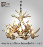 Real Antler White-tail Inverted Chandelier WTINVT-4