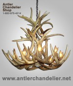 Real Antler White-tail Cascading Chandelier WTRC-2