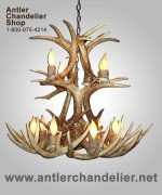 12 Light Real Antler White-tail Cascading Chandelier WTRC12lt-3