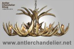 Real Antler White-tail Oblong Chandelier WTROB-5