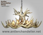 Real Antler XXL White-tail Single-Tier Chandelier WTXXLSNGL