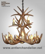 Reproduction 12 light White-tail Chandelier CRS-2XL