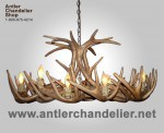 Reproduction White-tail Oval Chandelier CRS-4