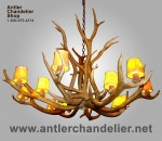 Real Antler 12 Light Elk Chandelier ELKSNGLREAL
