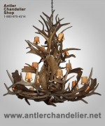 Real Antler Elk / Fallow Deer Chandelier ElkFallowCascd