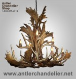 Real Antler Fallow / Mule Deer Chandelier FALMDCASC