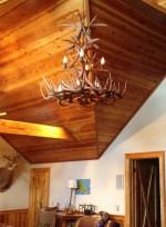 Real Antler White-tail Bighorn Chandelier WT-TALLSPR