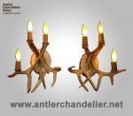 Real Antler Three Light White-Tail Sconce