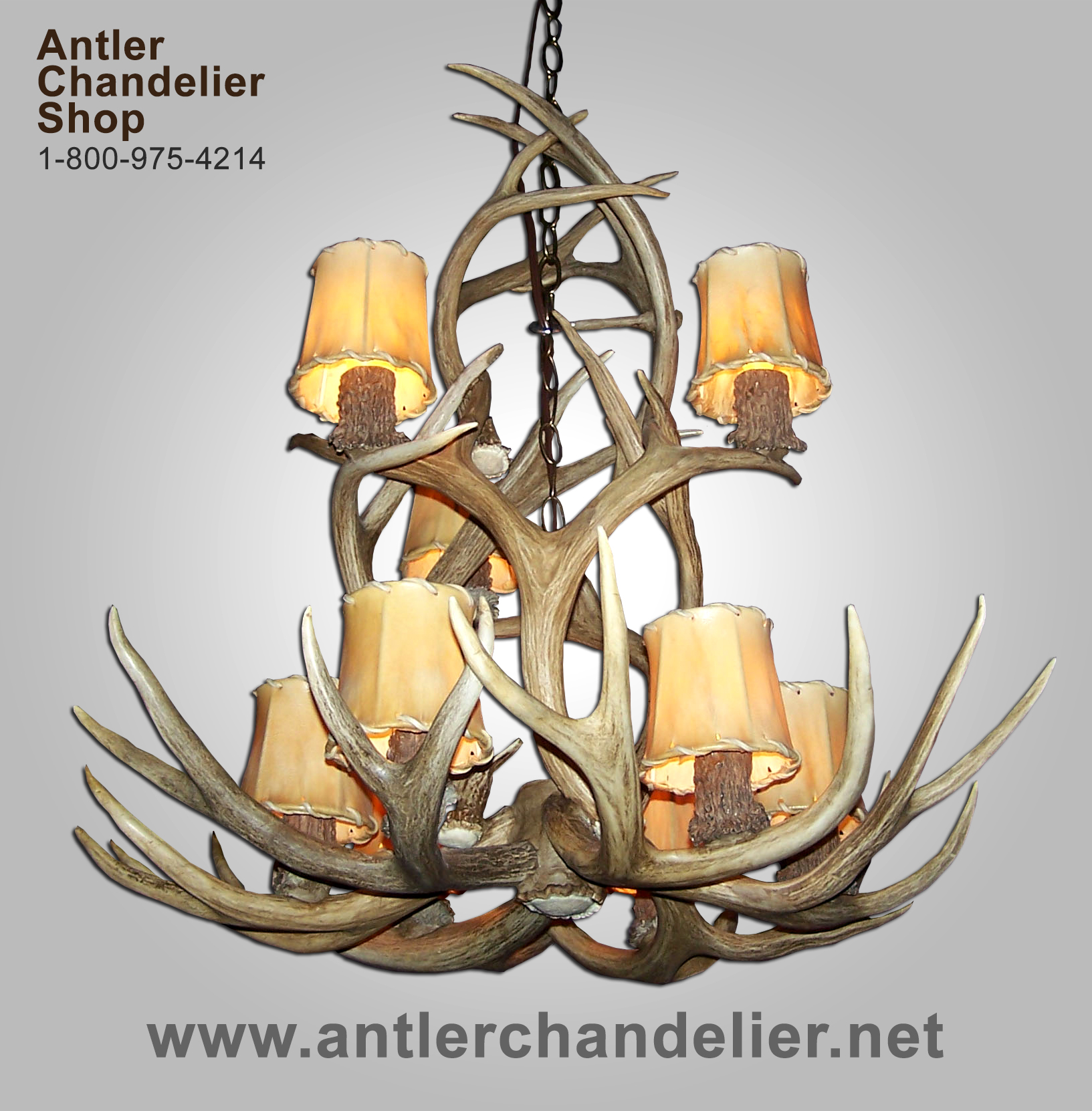 On Sale Today | Antler Chandelier