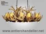 Real Antler Dining / Pool Table White-tail Chandelier ARIZWT