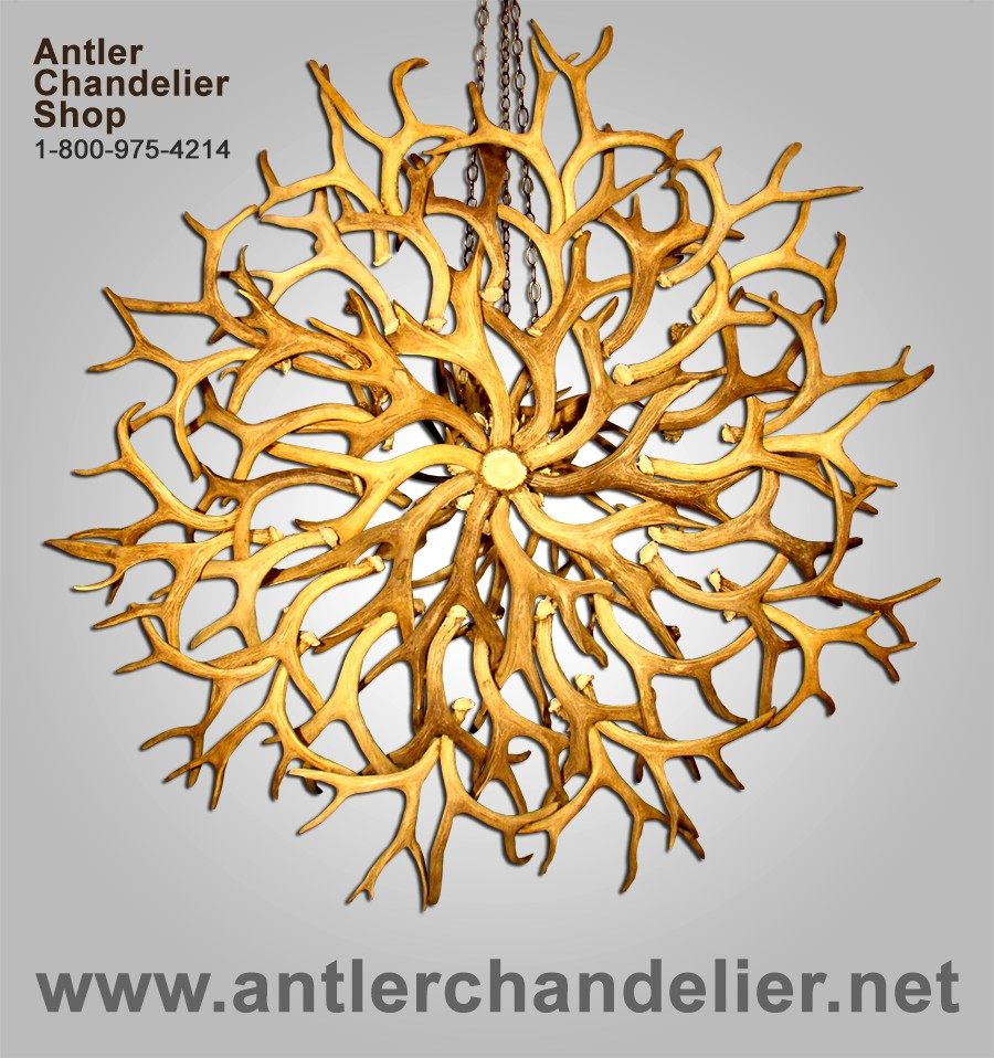 Real Antler Yellowstone Mule Deer Whitetail Chandelier – Real Deer Antler Chandelier