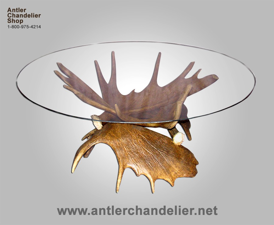 Real Antler Moose Coffee Table