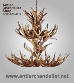 Real Antler Multi-tier Mule Deer Chandelier MD2TR