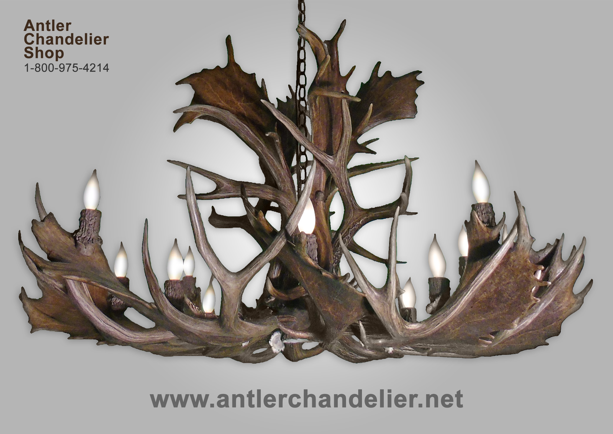 antler singles over 50 Looking for the perfect single antler any price under $25 $25 to $50 $50 to $100 over $100 custom enter minimum price to.