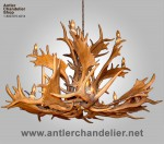 Reproduction Elk / Fallow Antler Chandelier CRL-27