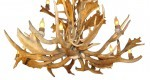 Bottom view of our Elk/ Fallow Deer Chandeliers