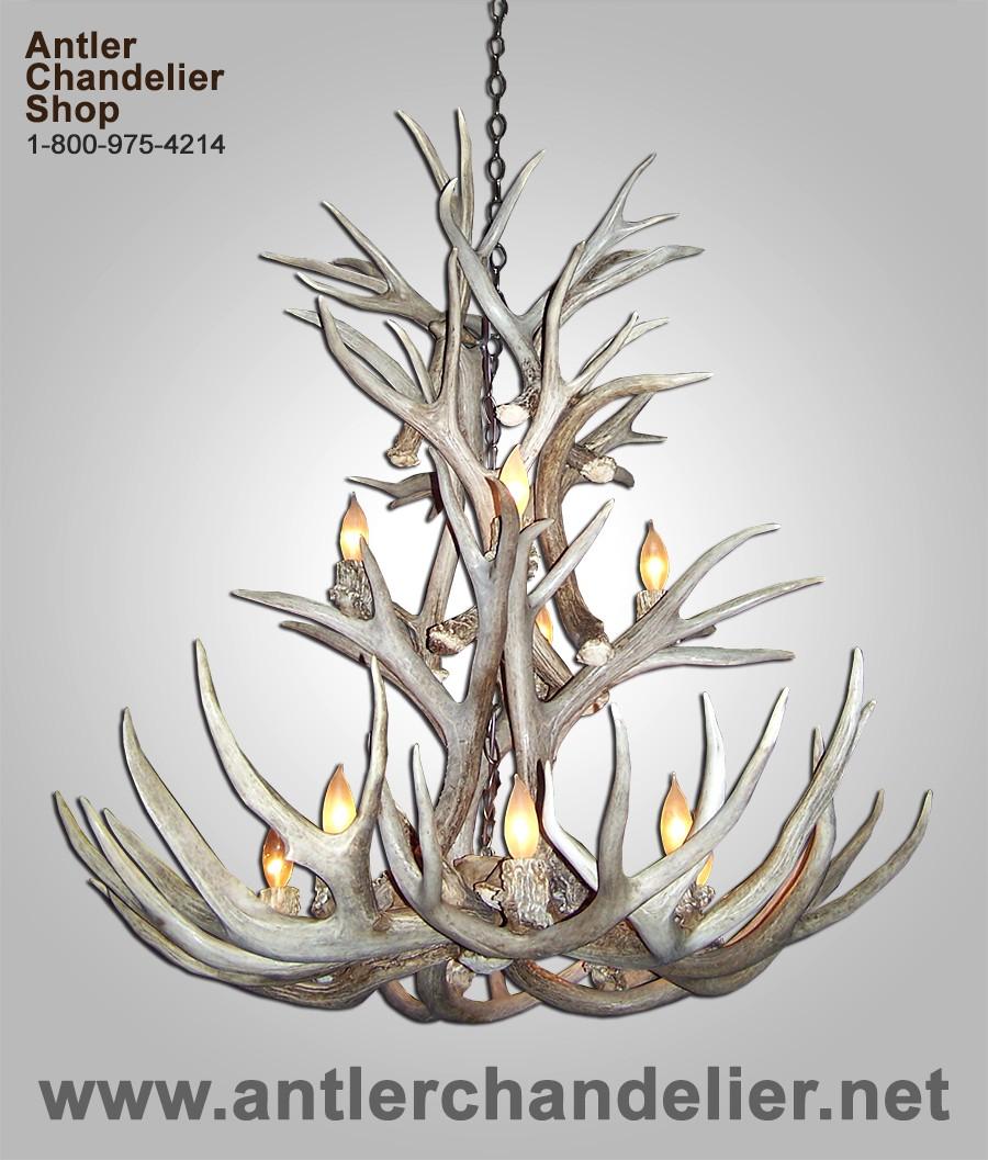 Real antler mule deer cascade chandelier mdcsc 5 antler chandelier real antler mule deer cascade chandelier mdcsc 5 arubaitofo Images