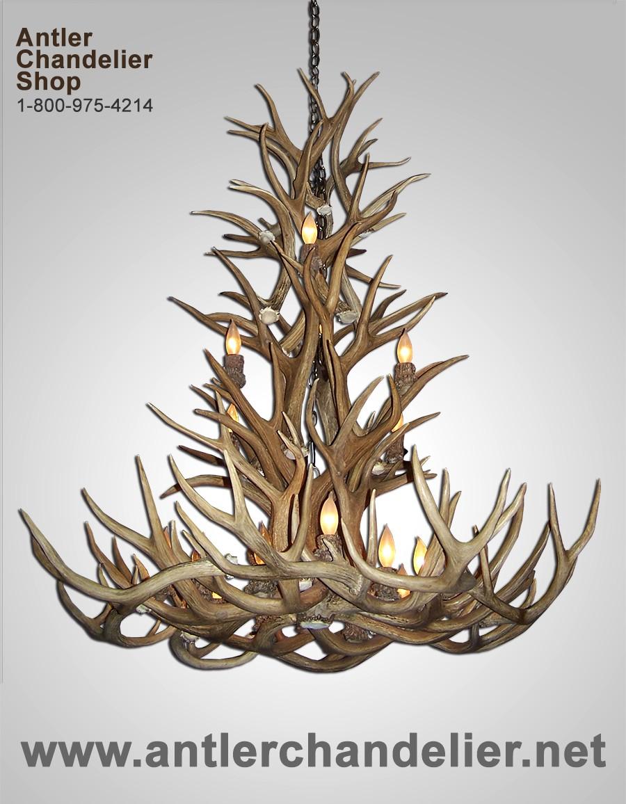 Real antler mule deer grand teton chandelier mdtspr 4 antler real antler mule deer grand teton chandelier mdtspr 4 arubaitofo Gallery