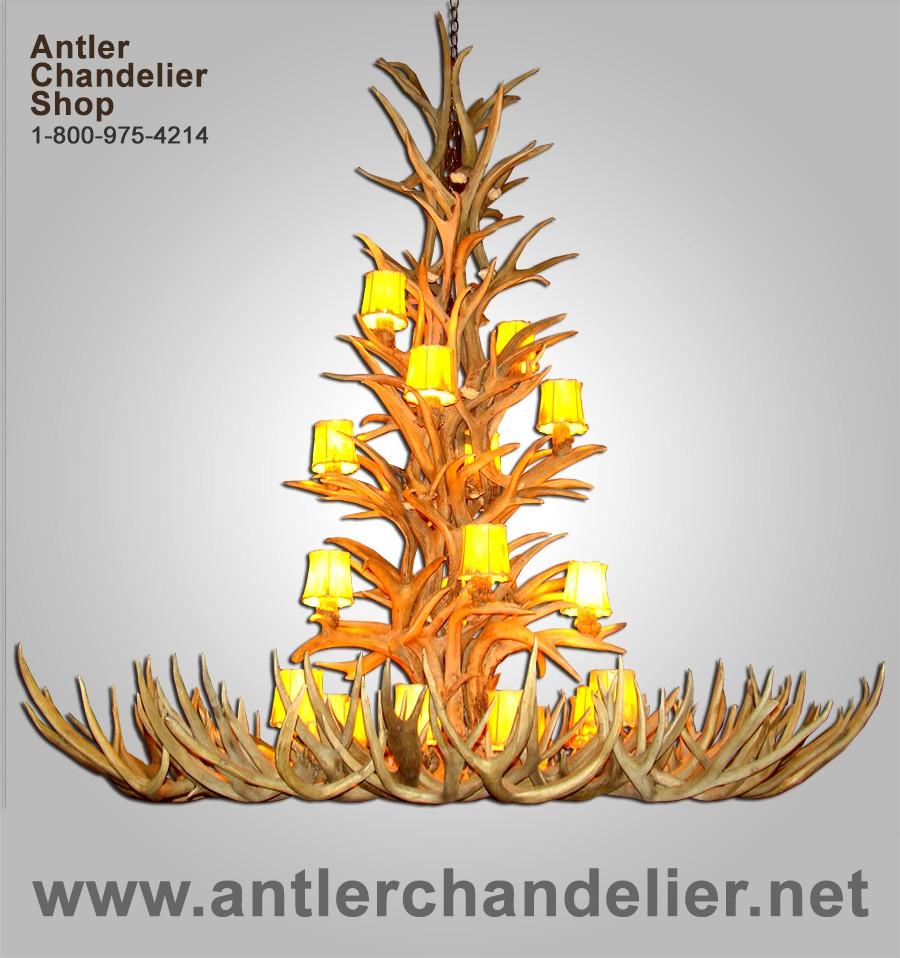 Real antler yellowstone mule deer whitetail chandelier aplchnmdwt real antler yellowstone mule deer whitetail chandelier aplchnmdwt arubaitofo Images