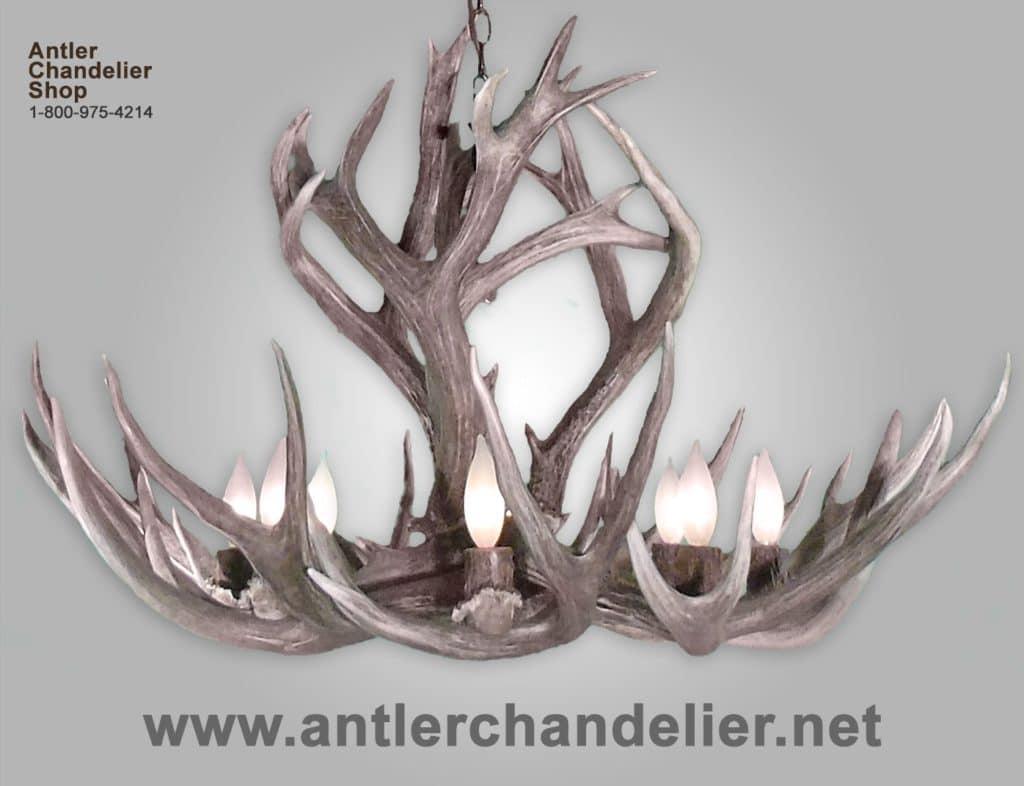 Small med chandeliers antler chandelier real antler rocky mountain mule deer chandelier arubaitofo Gallery