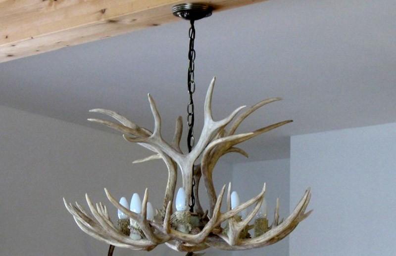 Real antler mule deer chandelier mdsp1 antler chandelier real antler mule deer chandelier mdsp1 aloadofball Choice Image